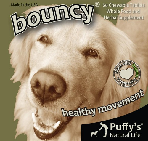 Bouncy-Front Only(final).jpg