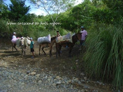 Philippines 027_500x375.jpg